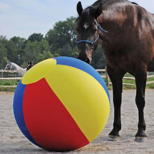 "Jolly Mega Ball 30"" Beach Ball Cover"