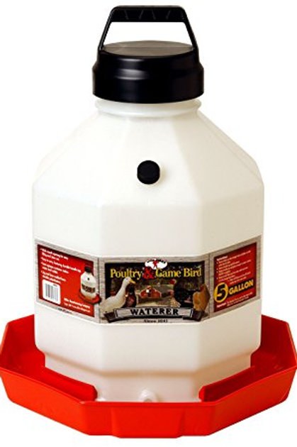 Little Giant Plastic Poultry Waterer 5 Gallon
