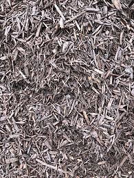 brown bark.jpg