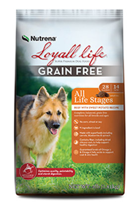 Loyall Grain Free Beef