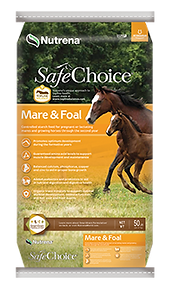 safe choice mare.png