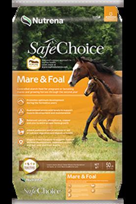 Safe Choice Mare & Foal