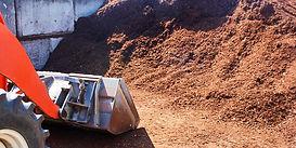 bulk soil.jpg
