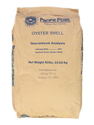 Pacific Pearl Oyster Shell
