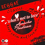 Apache Indian - What's Not To Love.png