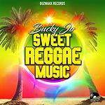 BUCKY JO - SWEET REGGAE MUSIC (COVER).jpg