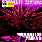 Macka B - Weh Di Herbs Gone.jpg