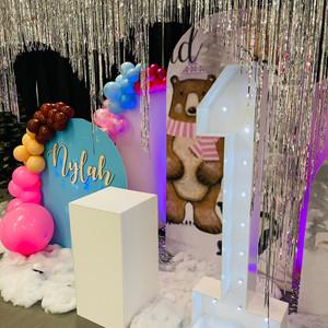 Winter Wonderland 1st Birthday Party