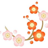 flower_17_2_sn.jpg