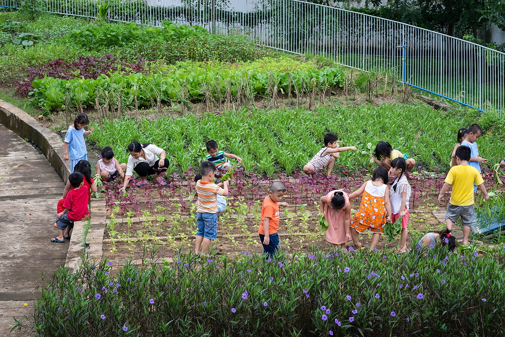 Farming Kindergarten - VTN Architects