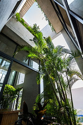 012.  Status: Completed on 2016.02  Program: Residence  Location: District 2, Ho Chi Minh city, Vietnam  Architect Firm: Vo Trong Nghia Architects (VNT Architects)  Principal Architects: Vo Trong Nghia  Design Team: Masaaki Iwamoto, Hsing-O Chiang, Nguyen Tat Dat, Nguyen Duy Phuoc, Takahito Yamada  Site Area: 268 m2  GFA: 275 m2  Photographs: Hiroyuki Oki  Client: Individual  Contractor: Wind and Water House JSC