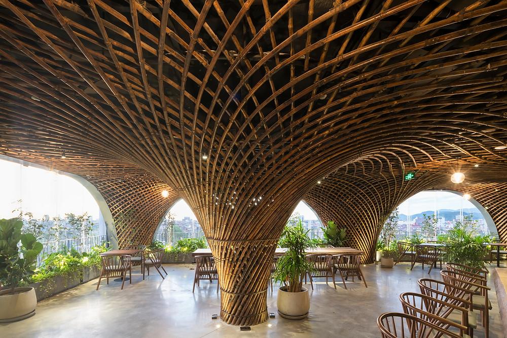 Nocenco Café   VTN Architects