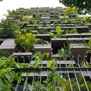 Urban Farming Office