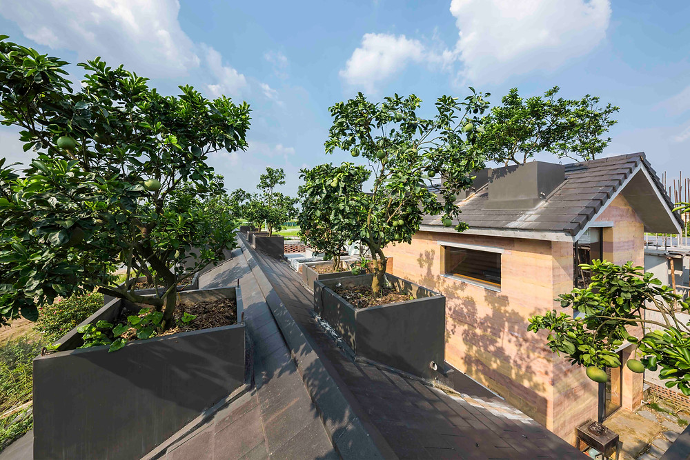 Dong Anh House | VTN Architects