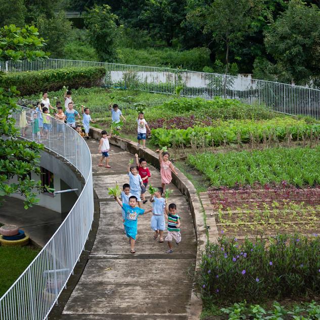 Farming Kindergarten