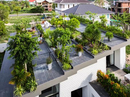 Hoàn House: Trồng Vườn Khi Không Có Không Gian