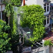 Green Renovation