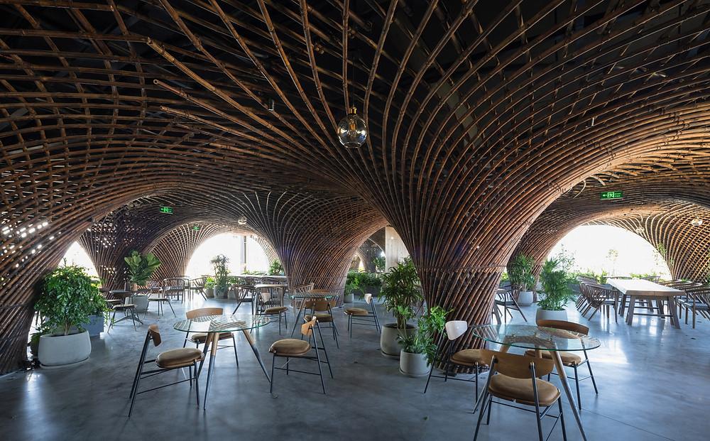 Bamboo Design & Construction | Nocenco Café