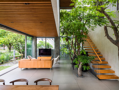 Stepping Park House: Bringing Nature Indoors