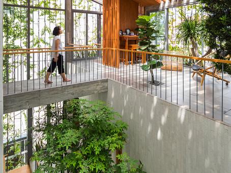 Stepping Park House: Mang thiên nhiên vào nhà