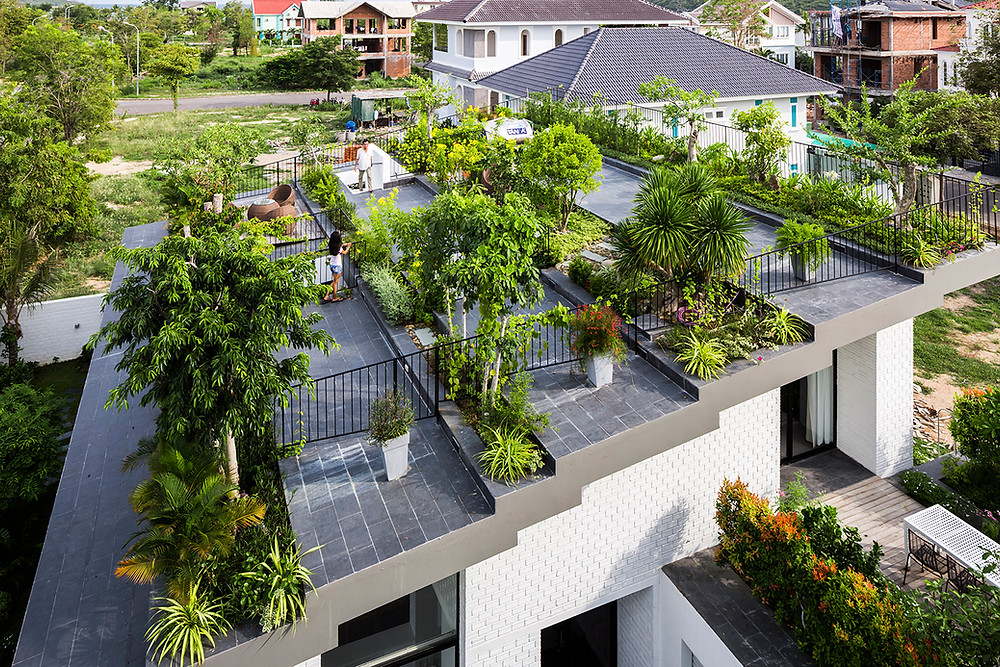 Rooftop Garden | Hoan House