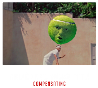 COMPENSATING_DIRECTOR.png