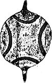 Kaurna Shield