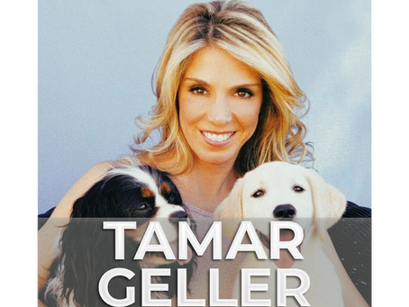 TAMAR GELLER | Is Your Dog's Food Affecting Their Behavior?