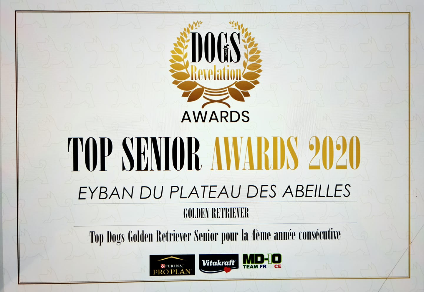 Top Senior Eyban 4