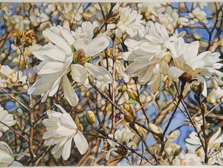 Pipkin's Art in Full Flower