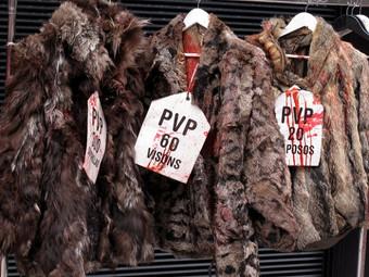 Noruega pro animalista: punto y final a la producción de piel animal.