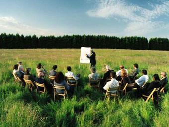 Coworking rural: la tranquilidad de la naturaleza como aliada de la creatividad.