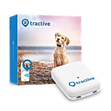 Tractive-GPS-Packaging track i box.png