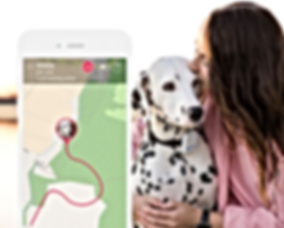 Tractive GPS Dog Tracker App iPhone Andr