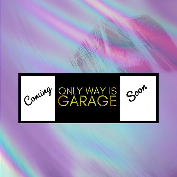 OWIG website.png