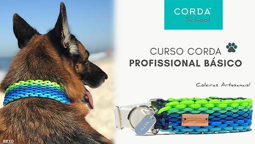 CAPA CURSO PRO.jpg