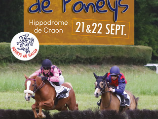 CRAON - FINALE HAIES A PONEYS - 2 jours de courses poneys - 21/22 septembre
