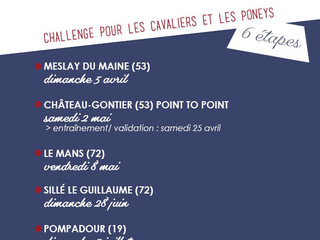 FRANCE SIRE et WEST RACING sponsorisent le 1er Cross poneys Challenge