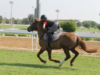 Sheikha Lateefa Bint Mansoor bin Zayed Al Nahyan Int'l Pony Race