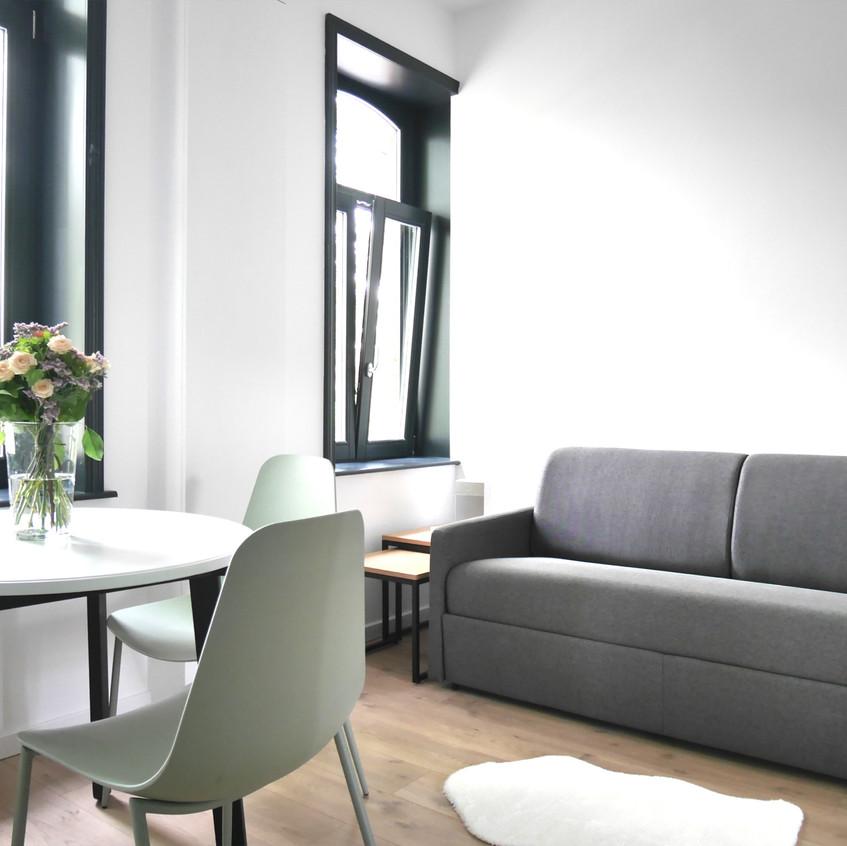 salon cuisine avec canapé-lit