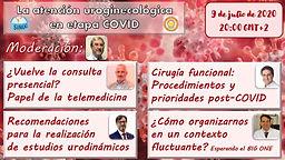 La atención uroginecológica en etapa COVID. Recomendaciones en las diferentes etapas de la pandemia.