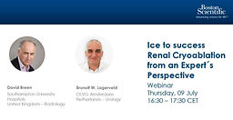 Ice to success. Renal Cryoablation from an Expert´s Perspective