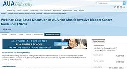 Case-Based Discussion of AUA Non-Muscle Invasive Bladder Cancer Guidelines