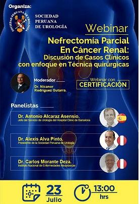 Nefrectomía Parcial en Cáncer Renal: Discusión de Casos Clínicos con enfoque en Técnicas quirúgicas