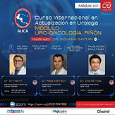 """Curso Internacional en Actualización en Urología """"MÓDULO URO-ONCOLOGÍA: RIÑÓN"""""""