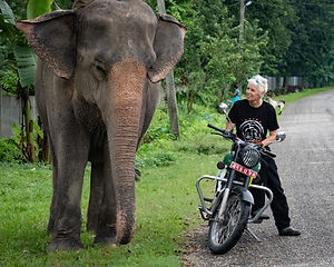 Trail of Legends - Chitwan NP