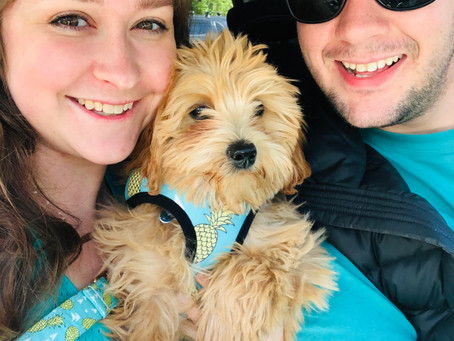 Newlyweds & New Puppy Parents... Oh My!