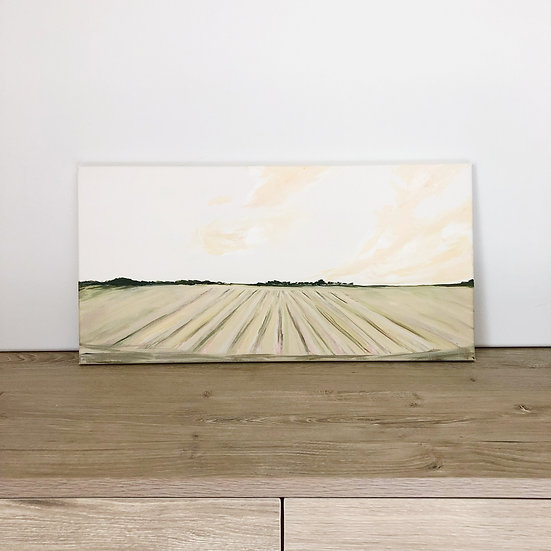 Texas Fields | 10x20 | Original on Canvas