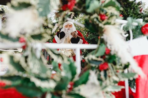 Navidad-5664.JPG