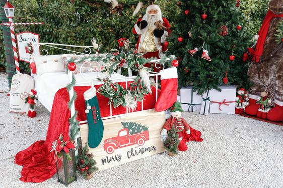 Navidad-5654.JPG